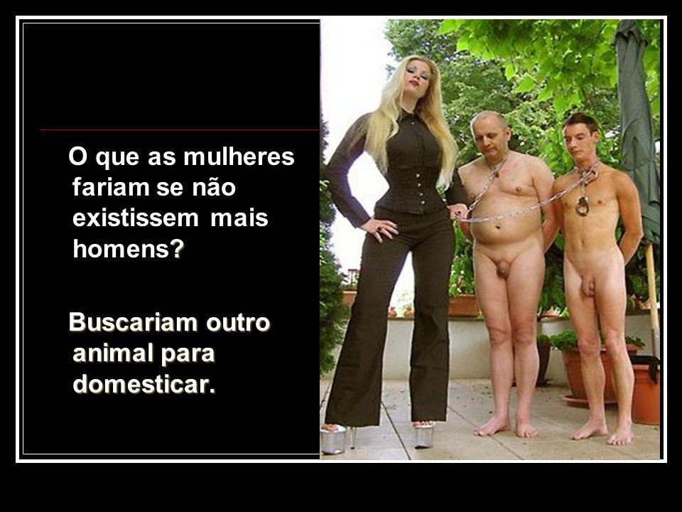 O que as mulheres fariam se não existissem mais homens? Buscariam outro animal para domesticar.