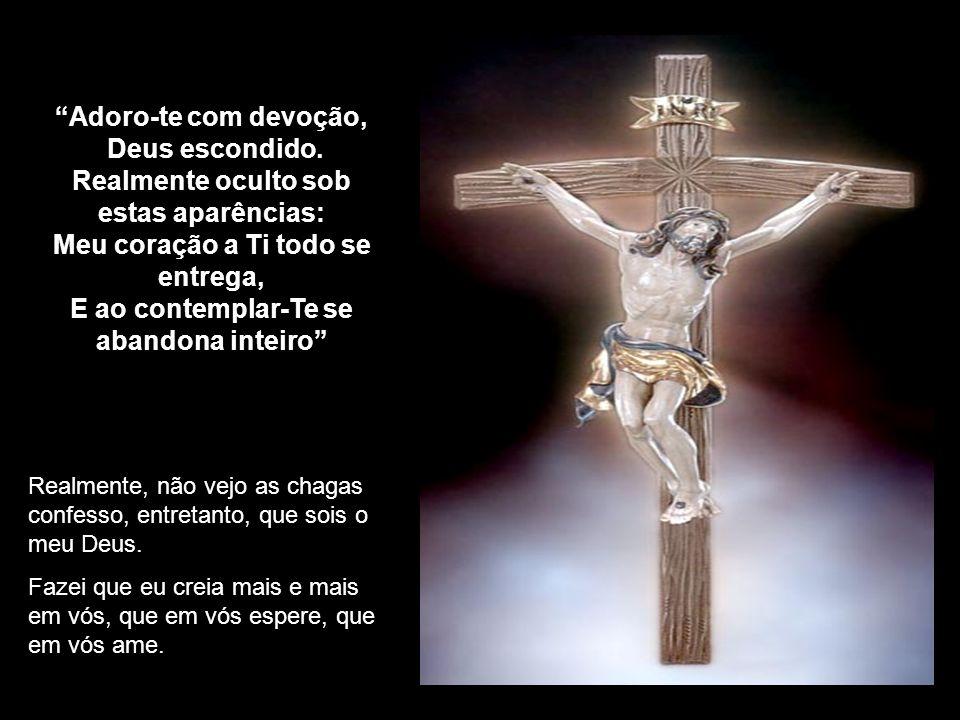 Adoro-te com devoção, Deus escondido.