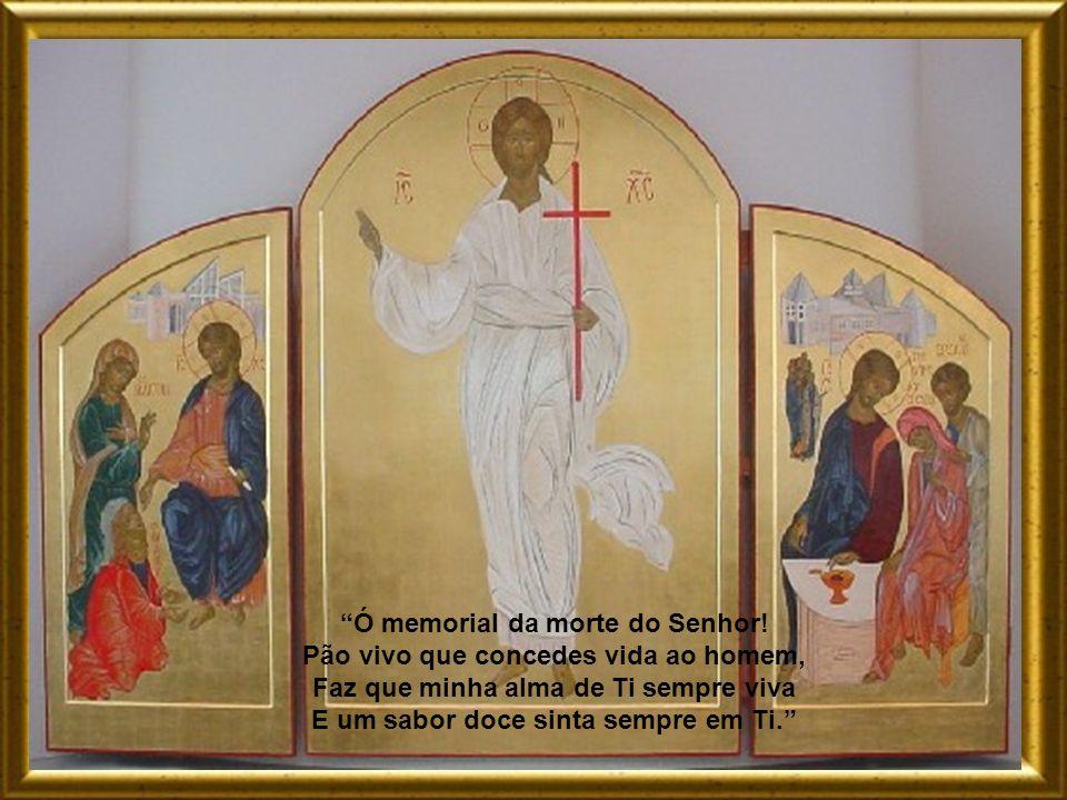 Como Tomé, tuas chagas eu não vejo; Mas confesso Senhor que és o meu Deus. Faz com que eu creia em Ti cada vez mais. Tenha esperança em Ti e a Ti te a
