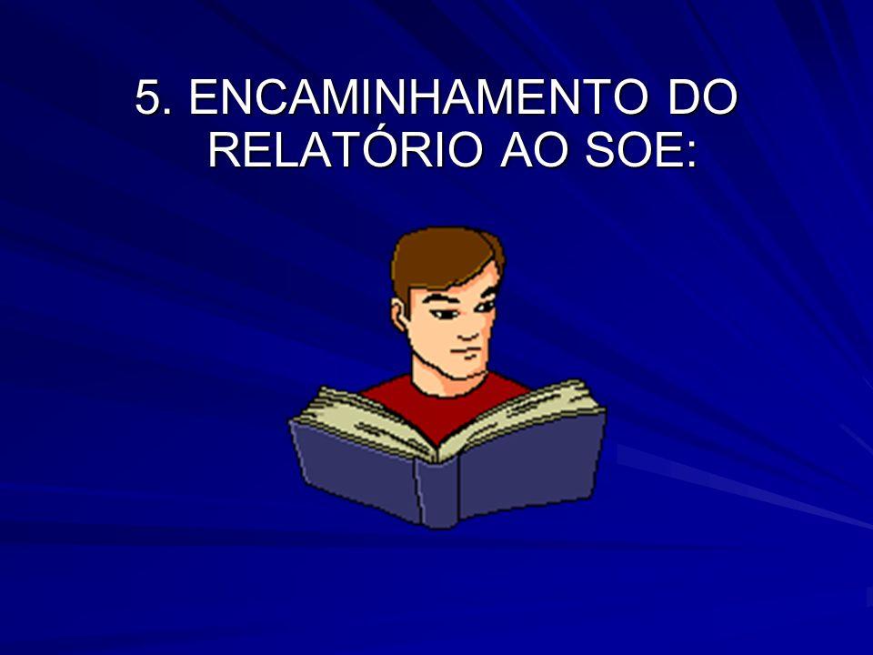 5. ENCAMINHAMENTO DO RELATÓRIO AO SOE: