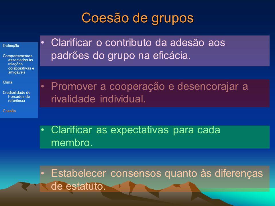 Coesão de grupos Clarificar o contributo da adesão aos padrões do grupo na eficácia.