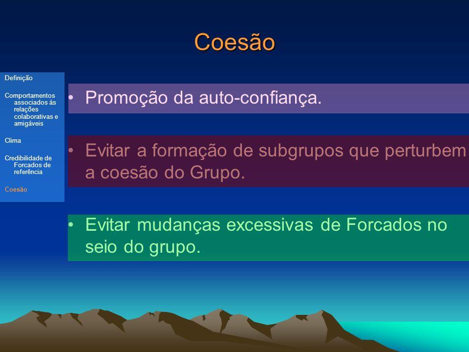 Coesão Promoção da auto-confiança.Evitar a formação de subgrupos que perturbem a coesão do Grupo.