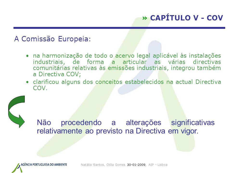 Natália Santos, Otília Gomes, 30-01-2009, AIP - Lisboa » CAPÍTULO V - COV A Comissão Europeia : na harmonização de todo o acervo legal aplicável às in