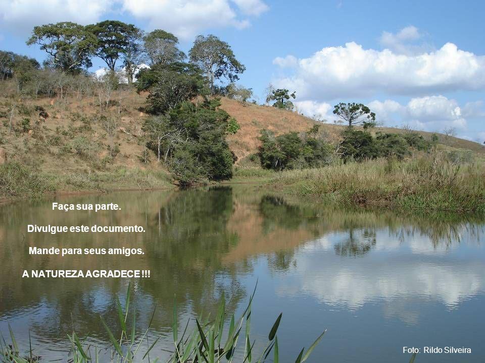 Foto: Rildo Silveira Faça sua parte.Divulgue este documento.