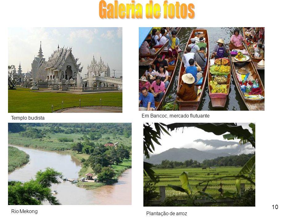 10 Em Bancoc, mercado flutuante Plantação de arroz Templo budista Rio Mekong
