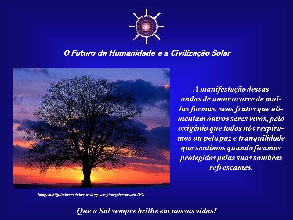 O Futuro da Humanidade e a Civilização Solar Que o Sol sempre brilhe em nossas vidas! Cada árvore passa toda a sua existência em pro- fundo estado med
