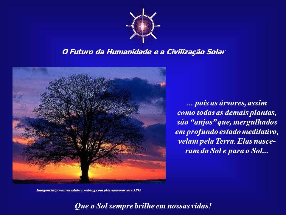 O Futuro da Humanidade e a Civilização Solar Que o Sol sempre brilhe em nossas vidas! Abater uma árvore, sem uma necessidade real, de- veria ser consi