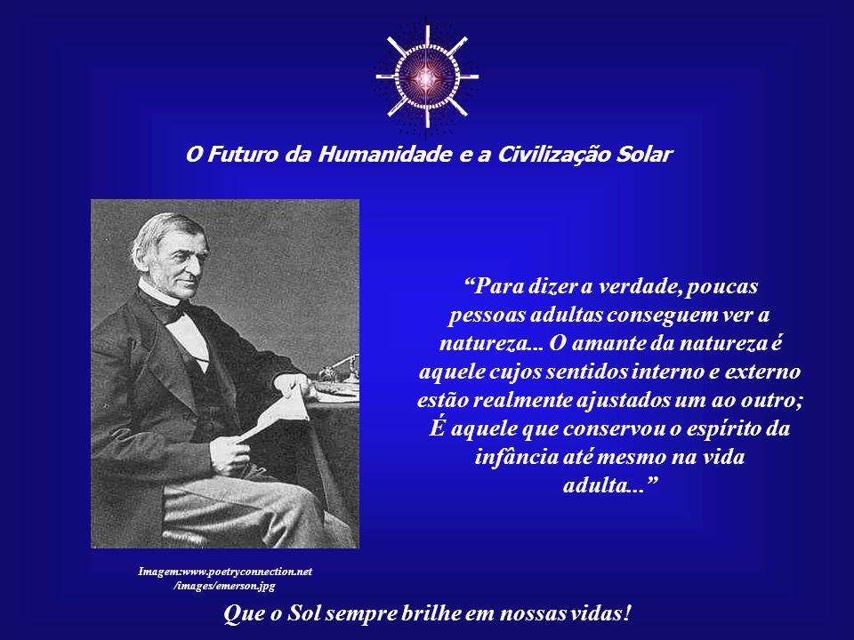 O Futuro da Humanidade e a Civilização Solar Que o Sol sempre brilhe em nossas vidas! Deus não gosta que derrubem florestas. Isto o deixa muito triste