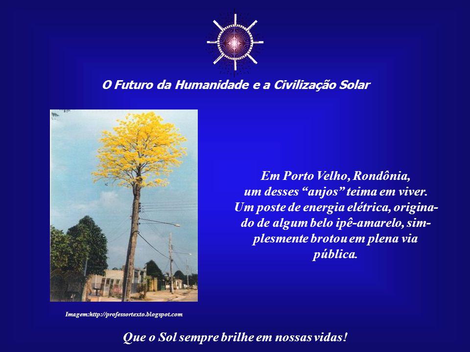 O Futuro da Humanidade e a Civilização Solar Que o Sol sempre brilhe em nossas vidas! Neles, sinto que nada de adverso poderia me acontecer na vida –