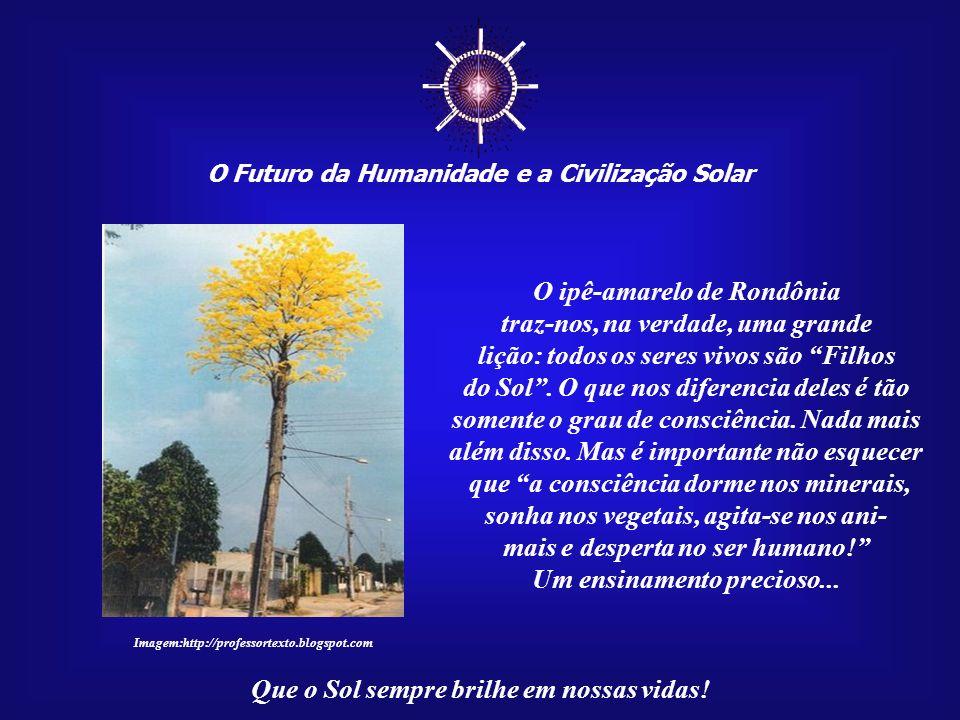 O Futuro da Humanidade e a Civilização Solar Que o Sol sempre brilhe em nossas vidas! Mas a vida não se rende facilmente. O poste virou atração naquel