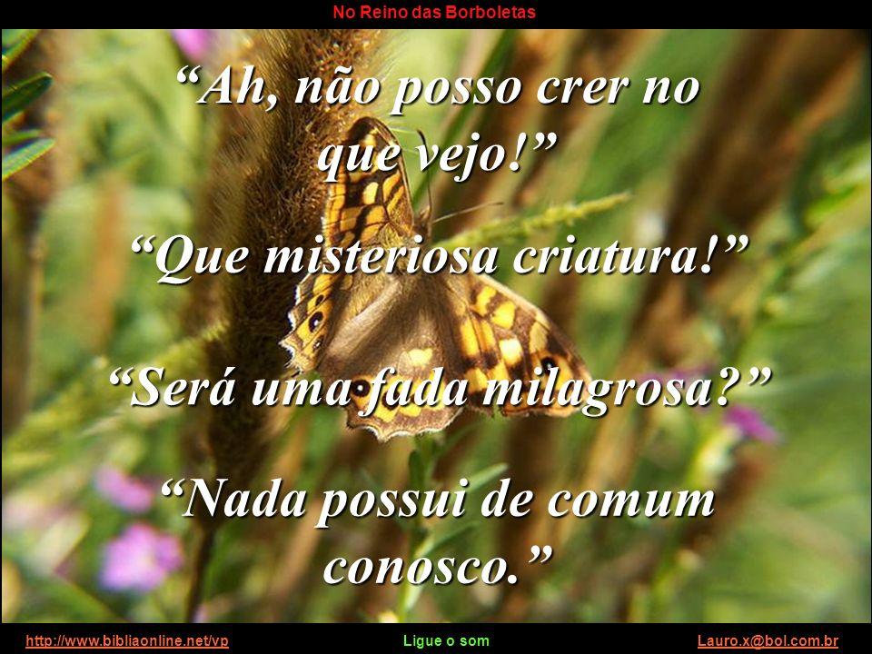 http://www.bibliaonline.net/vp Ligue o som Lauro.x@bol.com.brhttp://www.bibliaonline.net/vpLauro.x@bol.com.br No Reino das Borboletas Enquanto a mensa