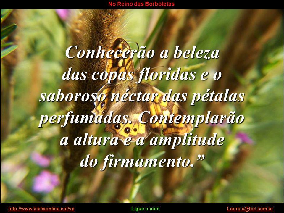 http://www.bibliaonline.net/vp Ligue o som Lauro.x@bol.com.brhttp://www.bibliaonline.net/vpLauro.x@bol.com.br No Reino das Borboletas Flutuarão no ime