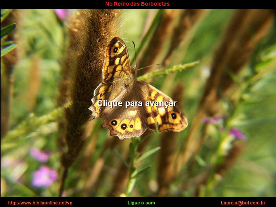 http://www.bibliaonline.net/vp Ligue o som Lauro.x@bol.com.brhttp://www.bibliaonline.net/vpLauro.x@bol.com.br No Reino das Borboletas Tenha um ótimo dia.