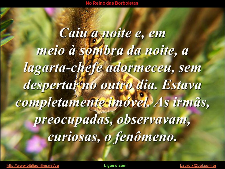 http://www.bibliaonline.net/vp Ligue o som Lauro.x@bol.com.brhttp://www.bibliaonline.net/vpLauro.x@bol.com.br No Reino das Borboletas As lagartas cala