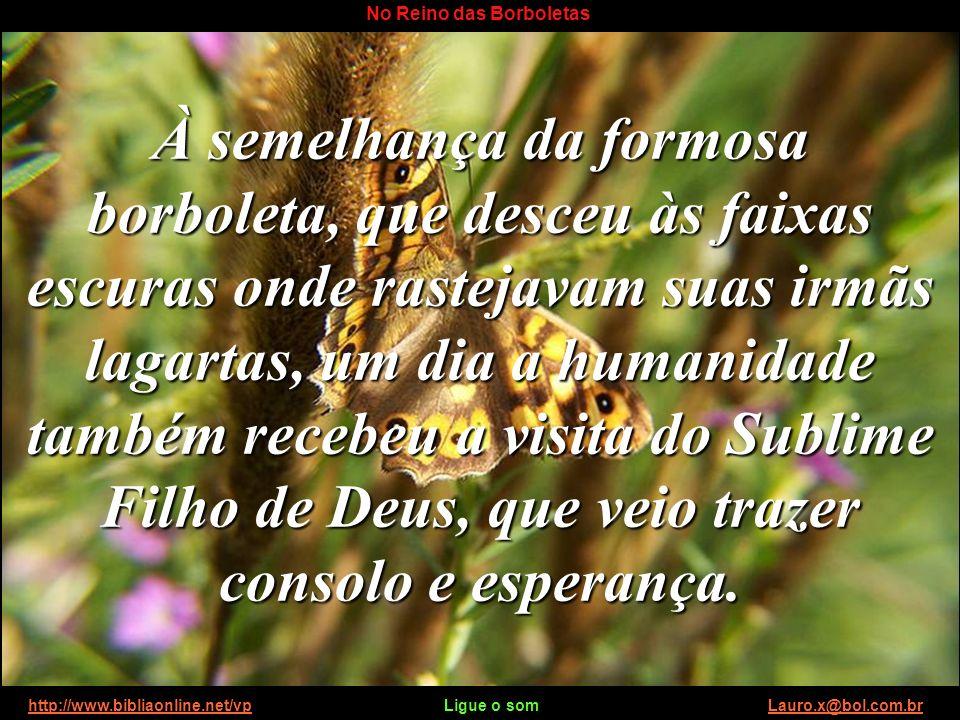 http://www.bibliaonline.net/vp Ligue o som Lauro.x@bol.com.brhttp://www.bibliaonline.net/vpLauro.x@bol.com.br No Reino das Borboletas Depois de alguns