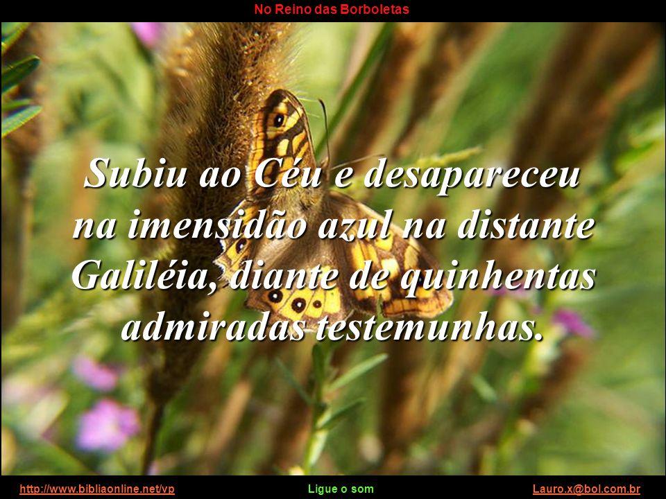 http://www.bibliaonline.net/vp Ligue o som Lauro.x@bol.com.brhttp://www.bibliaonline.net/vpLauro.x@bol.com.br No Reino das Borboletas Para provar que