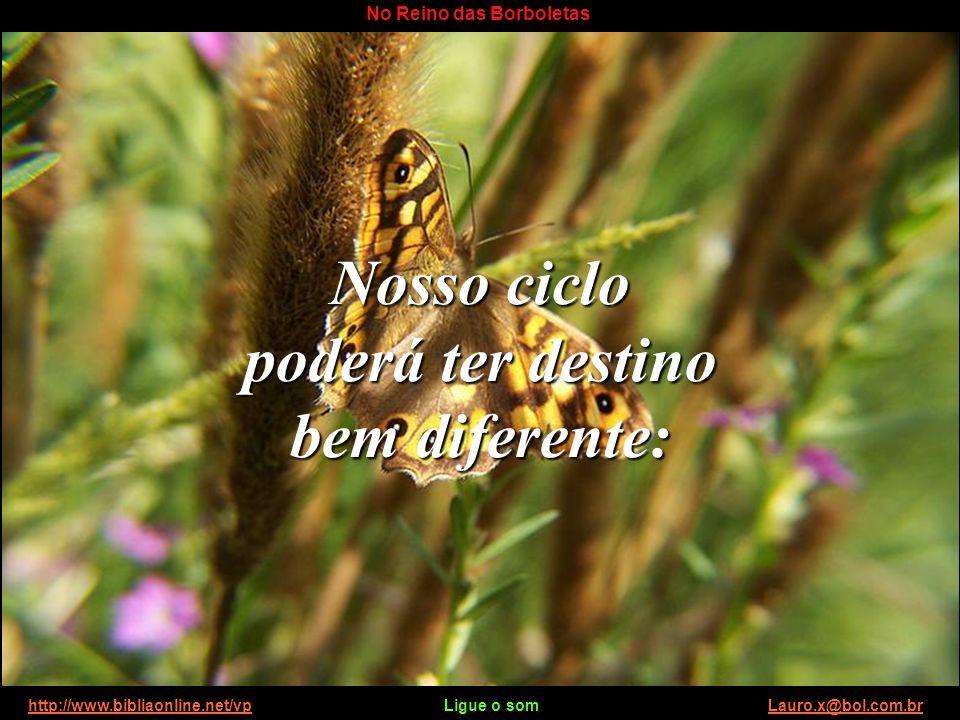 http://www.bibliaonline.net/vp Ligue o som Lauro.x@bol.com.brhttp://www.bibliaonline.net/vpLauro.x@bol.com.br No Reino das Borboletas O ciclo de vida