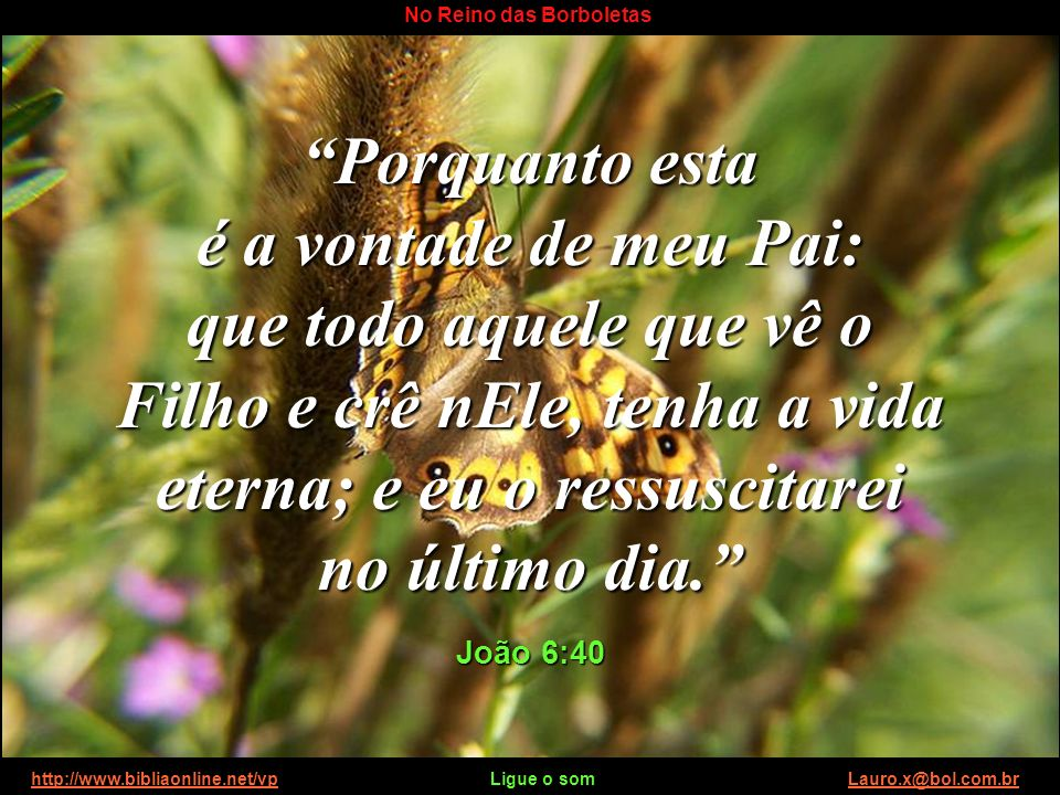 http://www.bibliaonline.net/vp Ligue o som Lauro.x@bol.com.brhttp://www.bibliaonline.net/vpLauro.x@bol.com.br No Reino das Borboletas Nosso ciclo pode