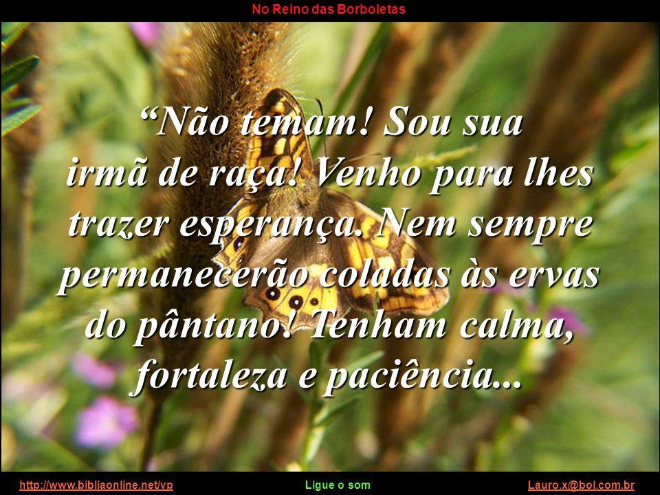 http://www.bibliaonline.net/vp Ligue o som Lauro.x@bol.com.brhttp://www.bibliaonline.net/vpLauro.x@bol.com.br No Reino das Borboletas Falou da vida abundante, que pulsa além do céu azul e plantou em nós a esperança de uma vida sem pranto, dor, morte ou sofrimento.