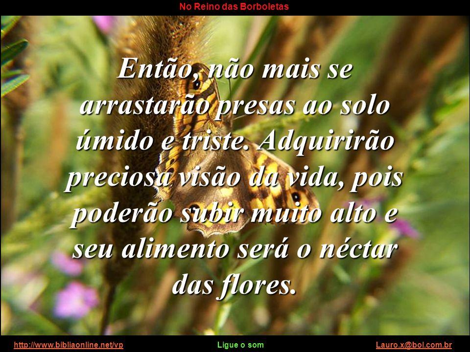 http://www.bibliaonline.net/vp Ligue o som Lauro.x@bol.com.brhttp://www.bibliaonline.net/vpLauro.x@bol.com.br No Reino das Borboletas Então, não mais se arrastarão presas ao solo úmido e triste.