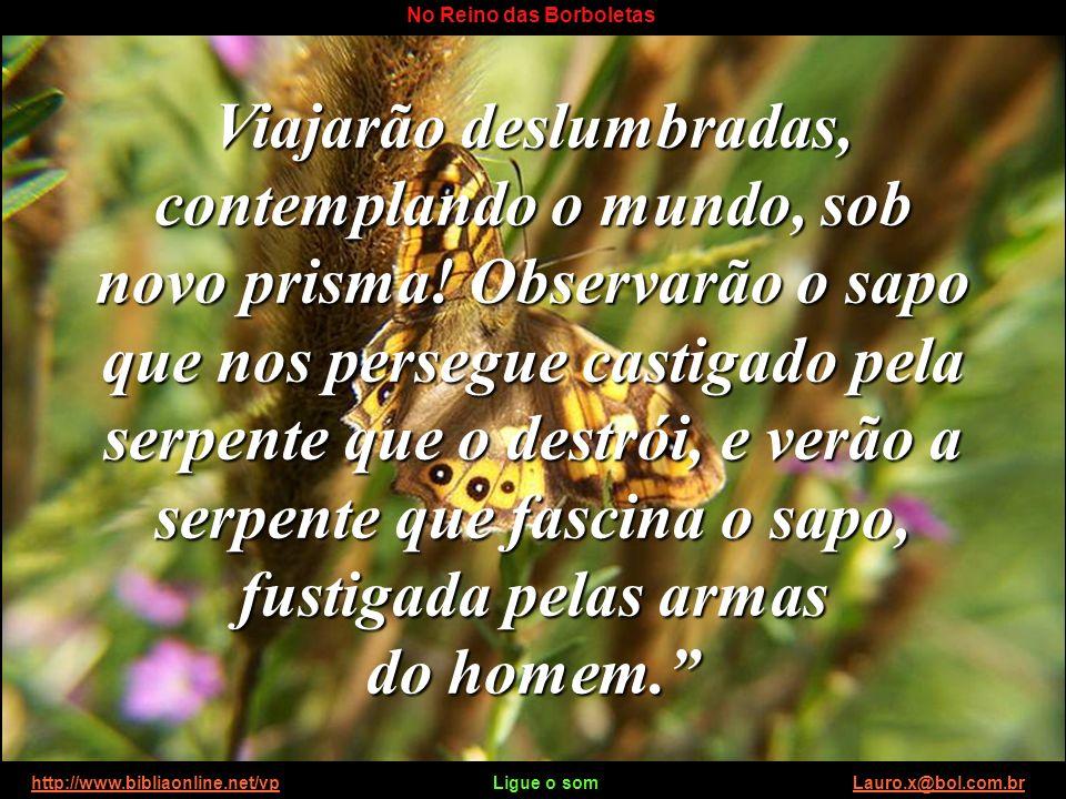 http://www.bibliaonline.net/vp Ligue o som Lauro.x@bol.com.brhttp://www.bibliaonline.net/vpLauro.x@bol.com.br No Reino das Borboletas Viajarão deslumbradas, contemplando o mundo, sob novo prisma.