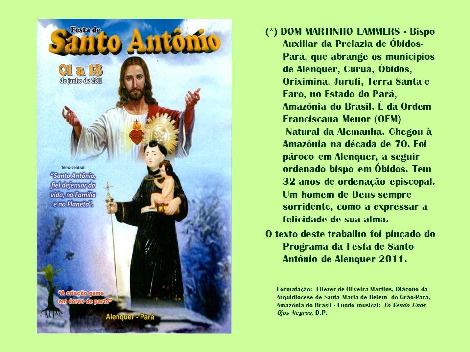 (*) DOM MARTINHO LAMMERS - Bispo Auxiliar da Prelazia de Óbidos- Pará, que abrange os municípios de Alenquer, Curuá, Óbidos, Oriximiná, Juruti, Terra