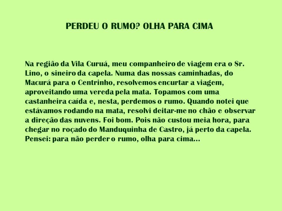 PERDEU O RUMO? OLHA PARA CIMA Na região da Vila Curuá, meu companheiro de viagem era o Sr. Lino, o sineiro da capela. Numa das nossas caminhadas, do M