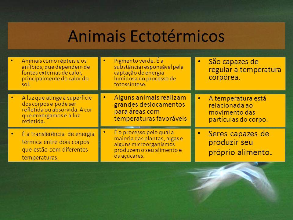 Animais Ectotérmicos Pigmento verde. É a substância responsável pela captação de energia luminosa no processo de fotossíntese. Pigmento verde. É a sub