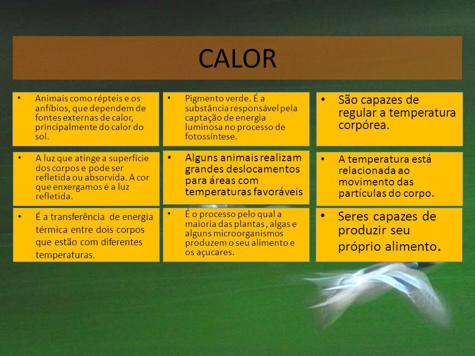 CALOR Pigmento verde. É a substância responsável pela captação de energia luminosa no processo de fotossíntese. Pigmento verde. É a substância respons