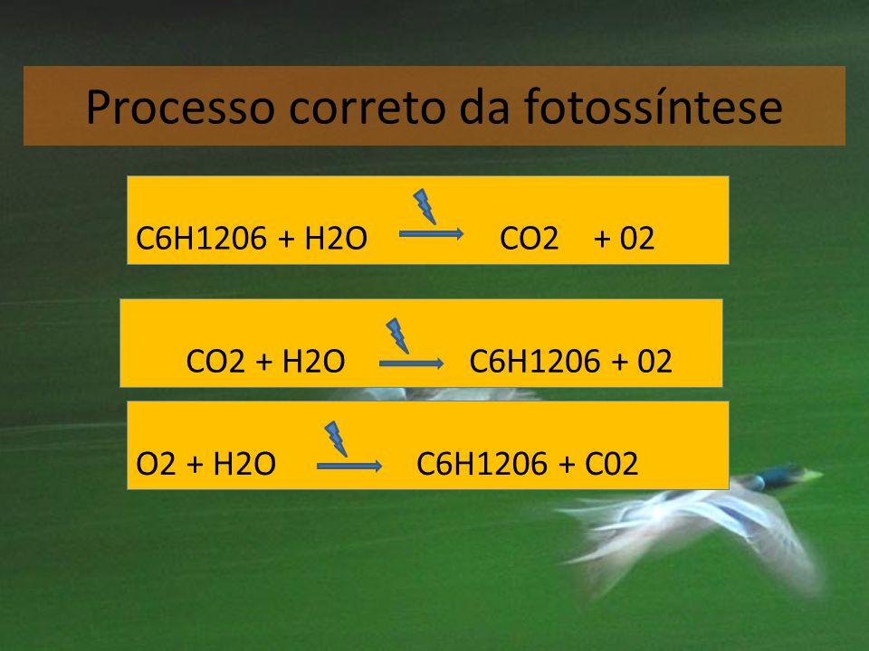 Processo correto da fotossíntese O2 + H2O C6H1206 + C02 C6H1206 + H2O CO2 + 02 CO2 + H2O C6H1206 + 02