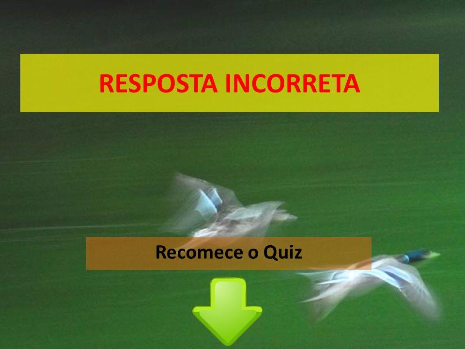 RESPOSTA INCORRETA Recomece o Quiz