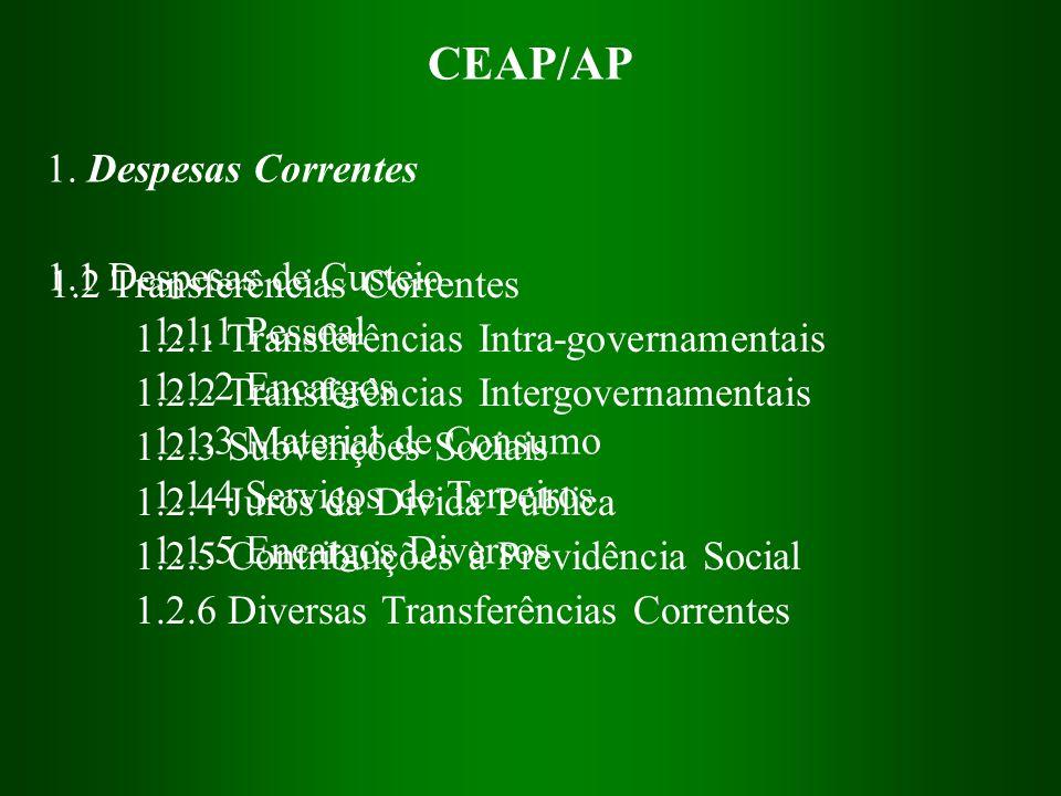 CEAP/AP 1. Despesas Correntes 1.1 Despesas de Custeio 1.1.1 Pessoal 1.1.2 Encargos 1.1.3 Material de Consumo 1.1.4 Serviços de Terceiros 1.1.5 Encargo