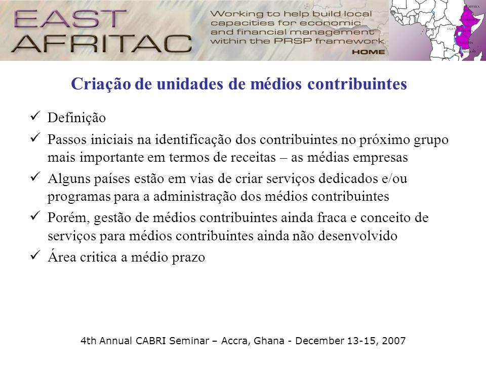 4th Annual CABRI Seminar – Accra, Ghana - December 13-15, 2007 Criação de unidades de médios contribuintes Definição Passos iniciais na identificação