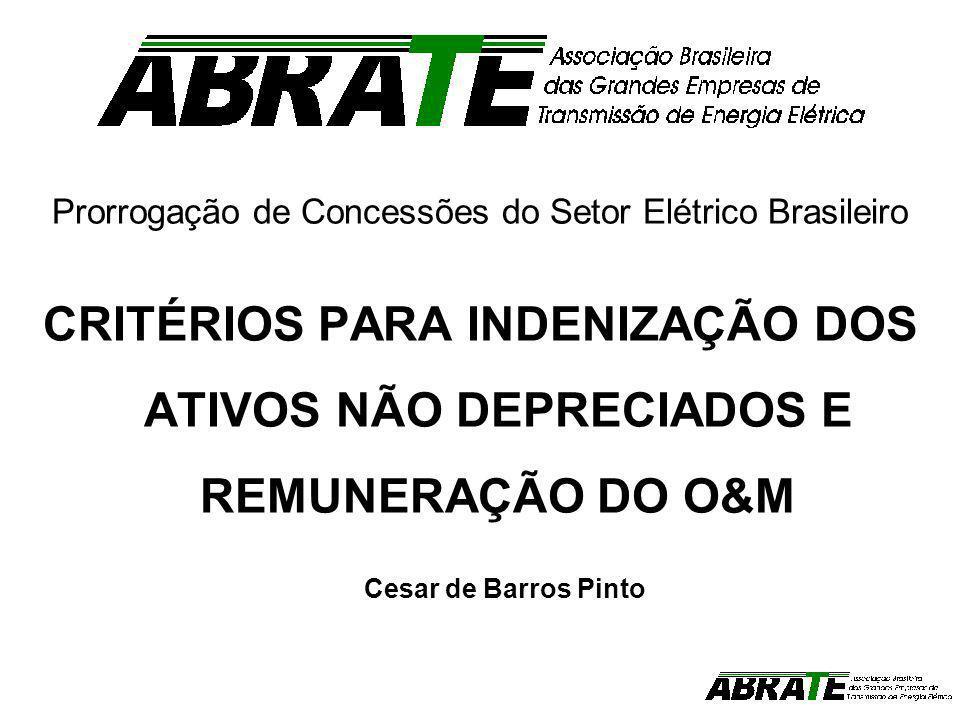 Prorrogação de Concessões do Setor Elétrico Brasileiro CRITÉRIOS PARA INDENIZAÇÃO DOS ATIVOS NÃO DEPRECIADOS E REMUNERAÇÃO DO O&M Cesar de Barros Pint