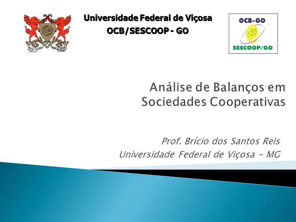 Prof. Brício dos Santos Reis Universidade Federal de Viçosa - MG Universidade Federal de Viçosa OCB/SESCOOP - GO