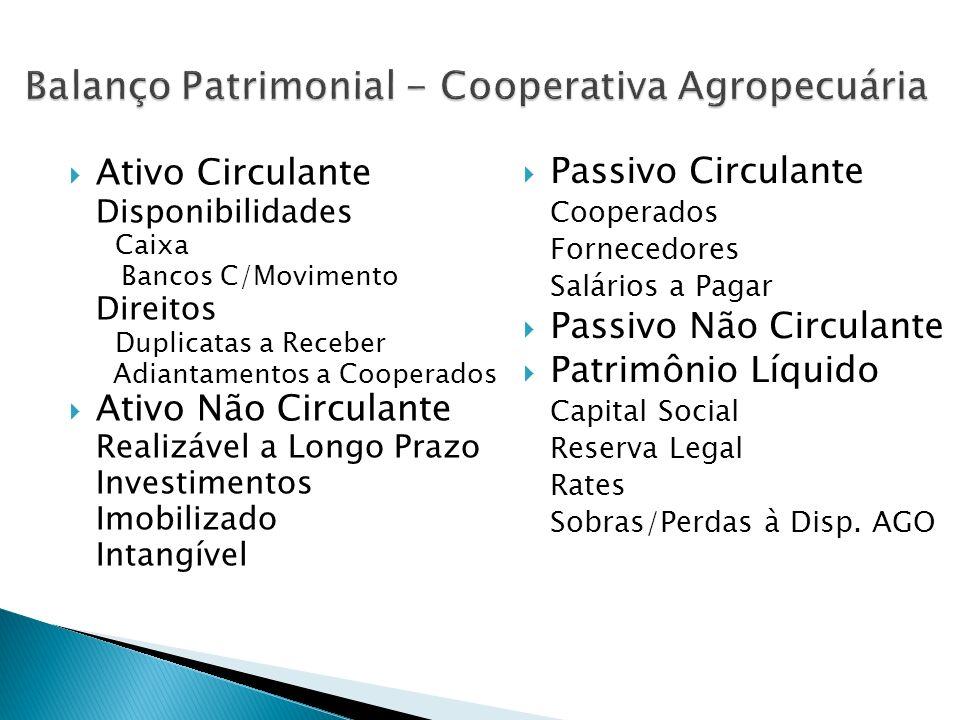 Ativo Circulante Disponibilidades Caixa Bancos C/Movimento Direitos Duplicatas a Receber Adiantamentos a Cooperados Ativo Não Circulante Realizável a