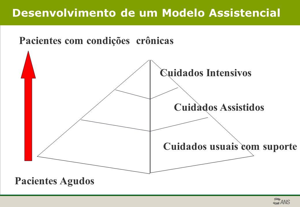 Desenvolvimento de um Modelo Assistencial Pacientes com condições crônicas Cuidados usuais com suporte Cuidados Assistidos Cuidados Intensivos Pacientes Agudos