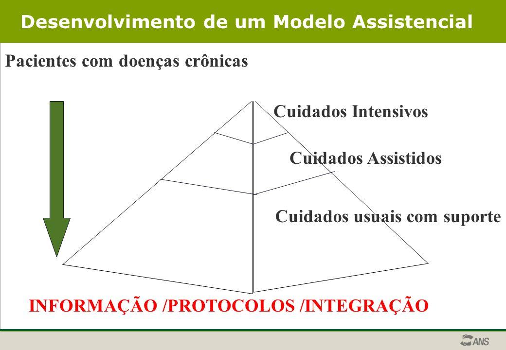 Desenvolvimento de um Modelo Assistencial Pacientes com doenças crônicas Cuidados usuais com suporte Cuidados Assistidos Cuidados Intensivos INFORMAÇÃO /PROTOCOLOS /INTEGRAÇÃO