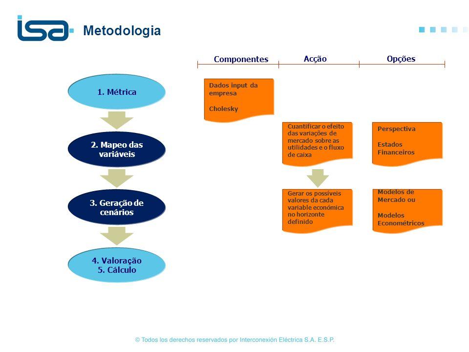 Dados input da empresa Cholesky Cuantificar o efeito das variações de mercado sobre as utilidades e o fluxo de caixa Perspectiva Estados Financeiros C