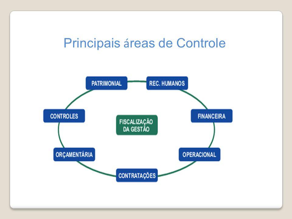 Principais á reas de Controle