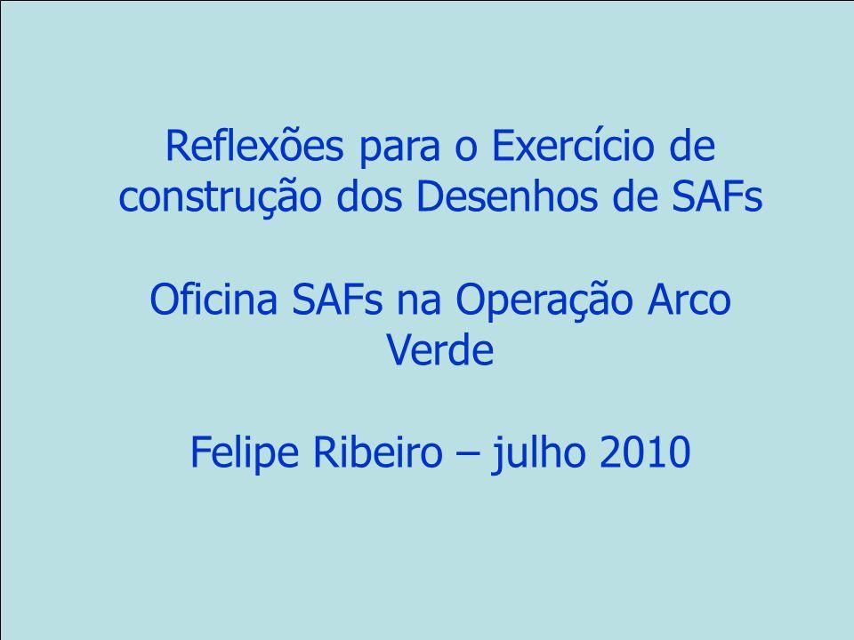 Reflexões para o Exercício de construção dos Desenhos de SAFs Oficina SAFs na Operação Arco Verde Felipe Ribeiro – julho 2010