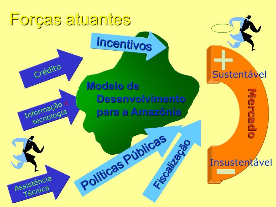 AP Forças atuantes Crédito Assistência Técnica Informação e tecnologia Mercado Sustentável Insustentável Modelo de Desenvolvimento para a Amazônia Inc