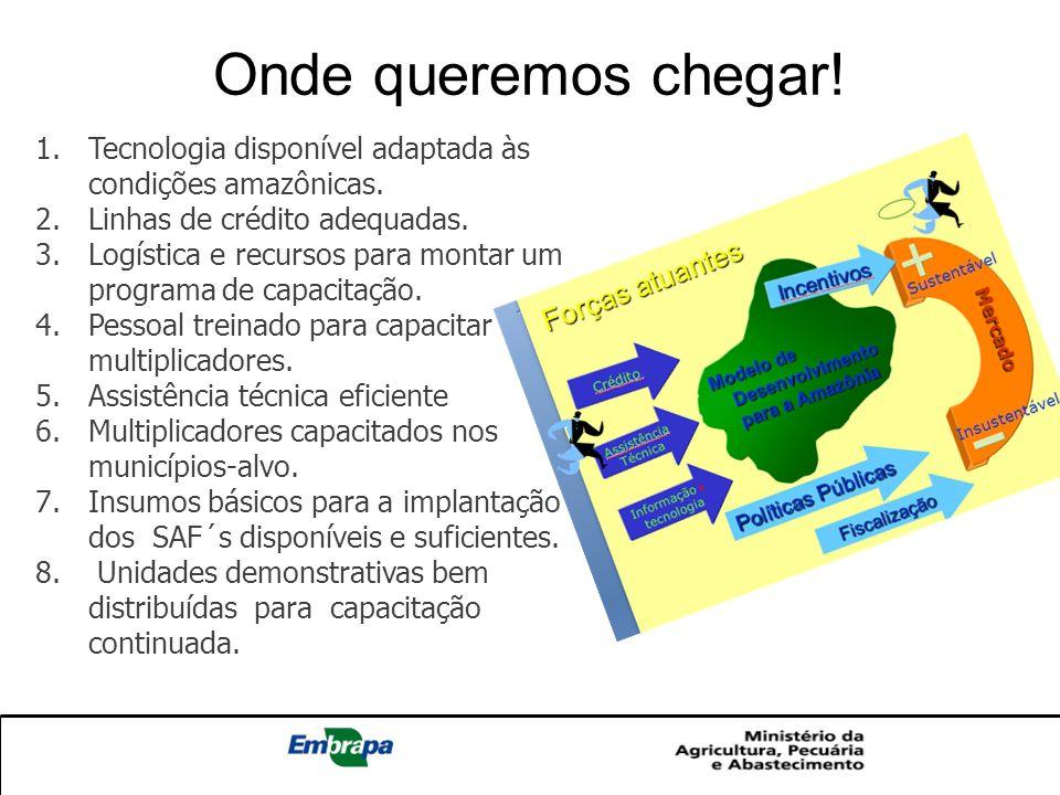 1.Tecnologia disponível adaptada às condições amazônicas. 2.Linhas de crédito adequadas. 3.Logística e recursos para montar um programa de capacitação