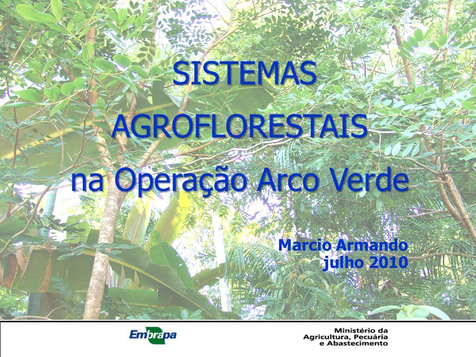 SISTEMAS AGROFLORESTAIS SISTEMAS AGROFLORESTAIS na Operação Arco Verde Marcio Armando julho 2010