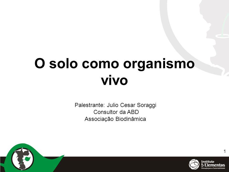 1 O solo como organismo vivo Palestrante: Julio Cesar Soraggi Consultor da ABD Associação Biodinâmica