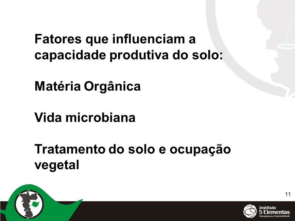 11 Fatores que influenciam a capacidade produtiva do solo: Matéria Orgânica Vida microbiana Tratamento do solo e ocupação vegetal