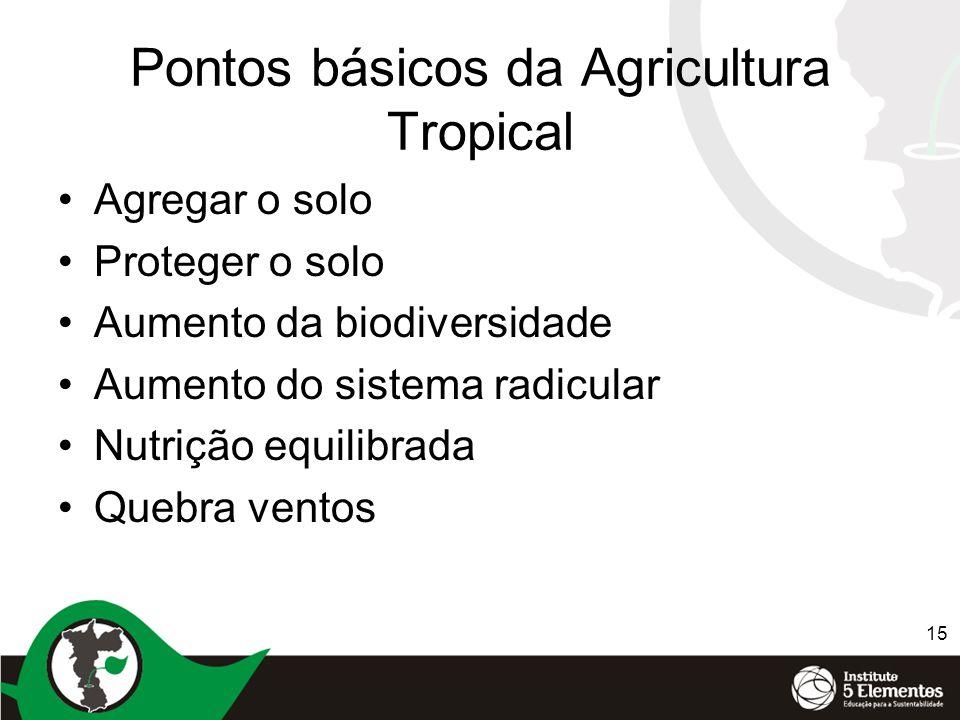 15 Pontos básicos da Agricultura Tropical Agregar o solo Proteger o solo Aumento da biodiversidade Aumento do sistema radicular Nutrição equilibrada Q