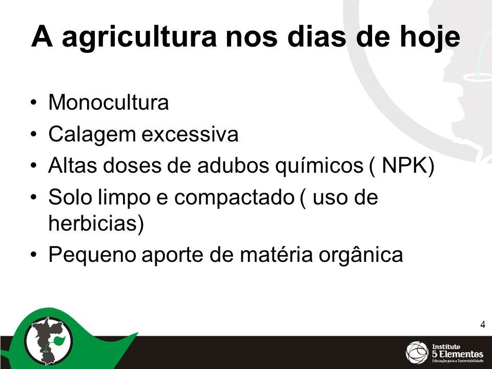 4 A agricultura nos dias de hoje Monocultura Calagem excessiva Altas doses de adubos químicos ( NPK) Solo limpo e compactado ( uso de herbicias) Peque