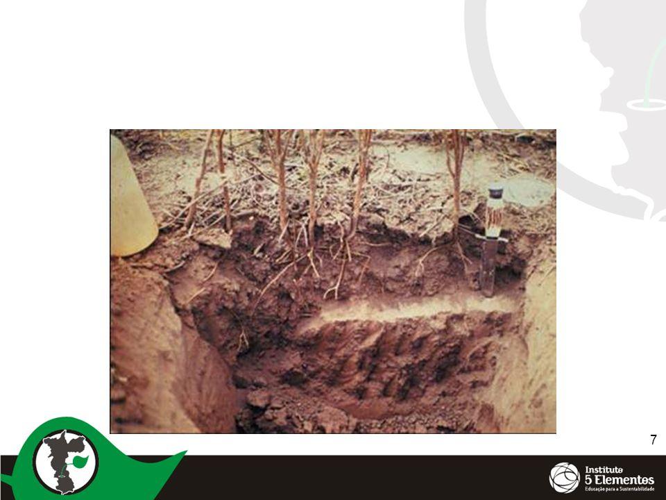 8 Diferença do solo de clima temperado e tropical Temperado ( receitas) ClimaTropical (conceitos) Smectita- muita sílicaArgilaCaolinita- muito alumínio RasoSoloProfundo 500 a 2200 mmol/dmCTC10 a 70 mmol/dm ElevadaRiqueza MineralBaixa Por cálcioAgregaçãoPor aluminio e ferro Correção do soloCálcioNutrientes PH 5,6 a 5,8 Saturação CTC 25 a 40% 2 milhões /g ativos ate 25 cmMicroorganismos15 a a 20 milhões/g ativos ate 15 cm ( reciclagem de materia organica) 3,5 a 5,0% decomposição lenta acido húmico e humita Húmus0,8 a 1,2% decomposição muito rápida ácido (fúlvico) 12°Temperatura Ideal25° fracaInsolãçãoforte Somente pela vegetaçãoEvaporação da águaEspecialmente pelo aquecimento direto do solo Pouco intensas parte em neveChuvasMuito intensas compactam o solo Limpo para capturar calorCondições do soloProtegido contra o calor e impacto da chuva Profundo para animar a vida e aquecê-lo Revolvimento do soloMínimo para não animar a vida De massa de nutrientesTecnologia agrícolaDe acesso aos nutrientes