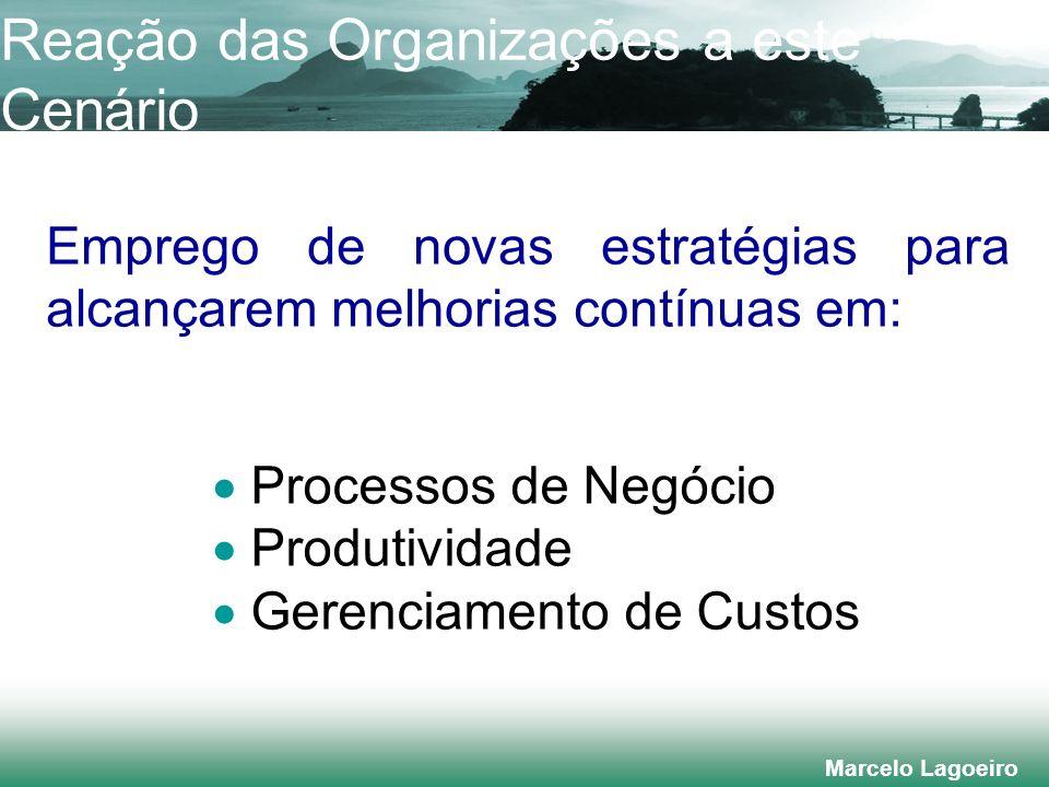Marcelo Lagoeiro Emprego de novas estratégias para alcançarem melhorias contínuas em: Processos de Negócio Produtividade Gerenciamento de Custos Reação das Organizações a este Cenário